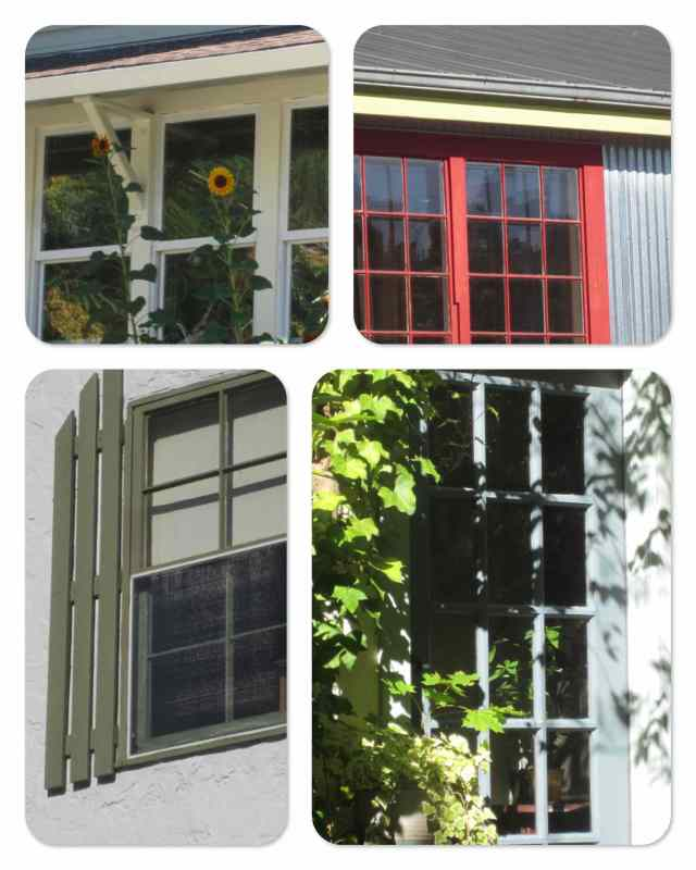 windows_collage