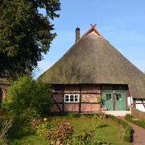 hallenhaus2