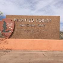 petforest1